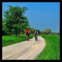 Two bikers with helmets riding along dirt path with green grass on both sdes with large maple tree, blue sky.