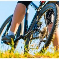 Biker standing on golden foilage over mountain bike leaning toward right.