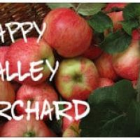 Brown basket with red apples with green leaves (Happy Valley Orchard)
