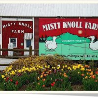 Red storefront with white lettering Misty Knoll Farm. Red, white and green sign with text Vermont Poultry mistyknollfarms.com